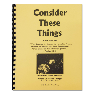 Consider These Things manual