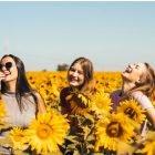 friends in sunflower field